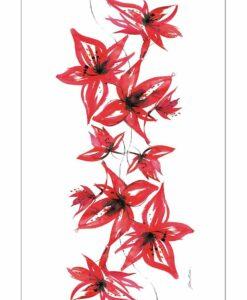 Belladonna | Red